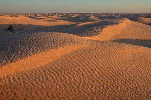 Ali Babina pustolovina na Djerbi 4****